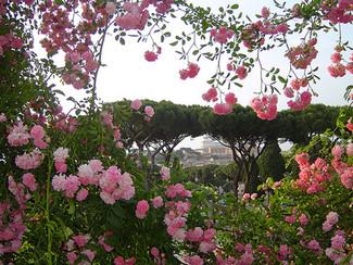 Colori e profumi di primavera a Roma