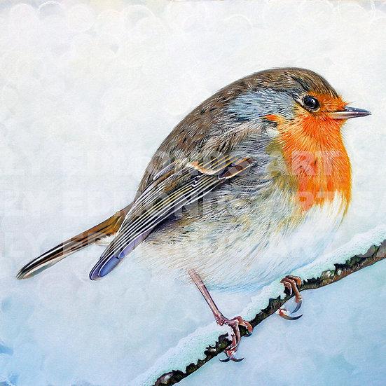 CHRISTMAS ROBIN | Print