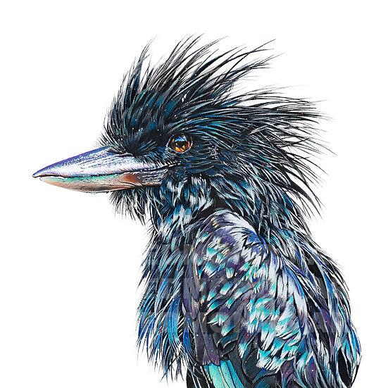 Black Kookaburra | Print