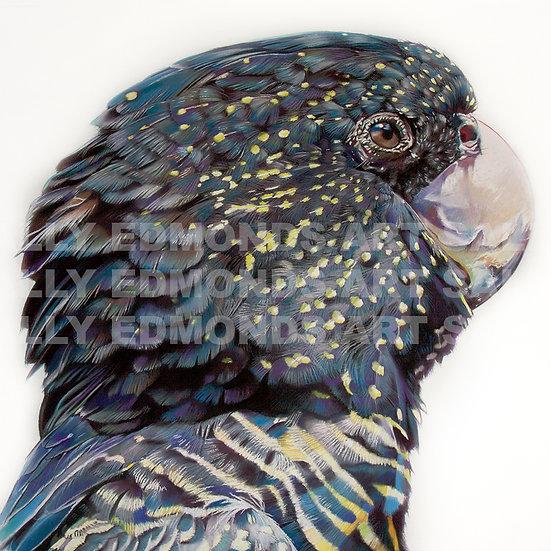 SKYE II | KAARAKIN SERIES | Very Limited Edition Print