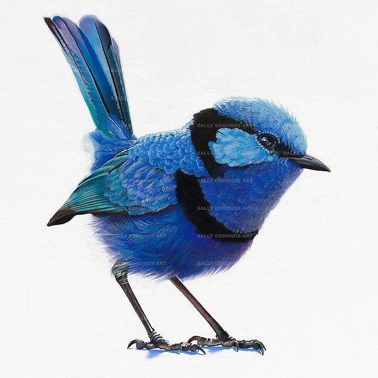 BERRY FARM BLUE | Print