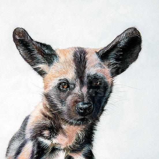 AFRICAN PAINTED DOG III | Print