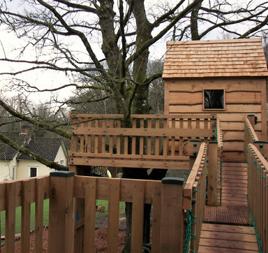 Treehouse With Red Cedar Shingle Roof