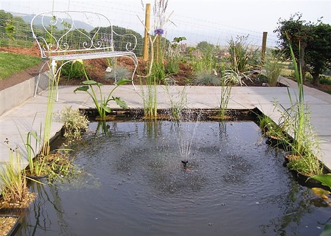 Contemporary Pond Project with Fountain & Planting