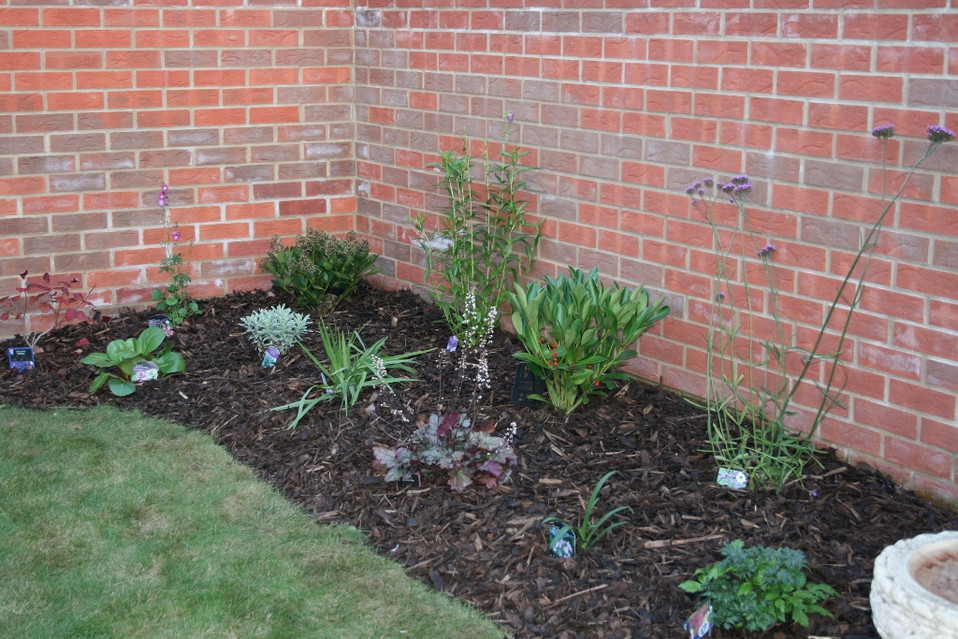Plant Beds With Wildlife Friendly Plants
