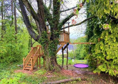 Treehouse with birds nest swing