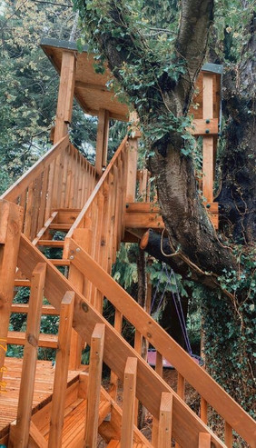 Treehouse built in Somerset