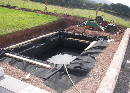 Contemporary Pond Project Stage 1