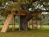 Treehouse in large oak tree - Somerset.j