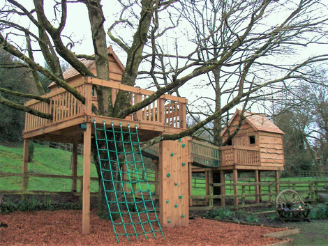 Treehouses Constructed Around Two Large Trees