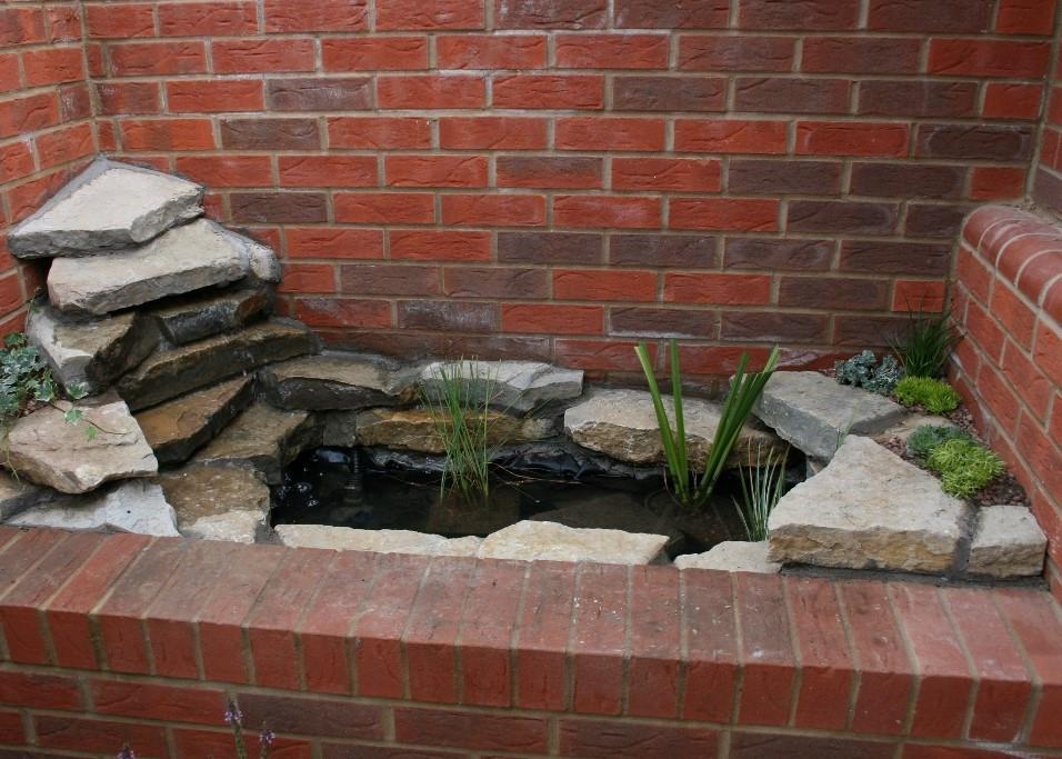Pond Area After 2