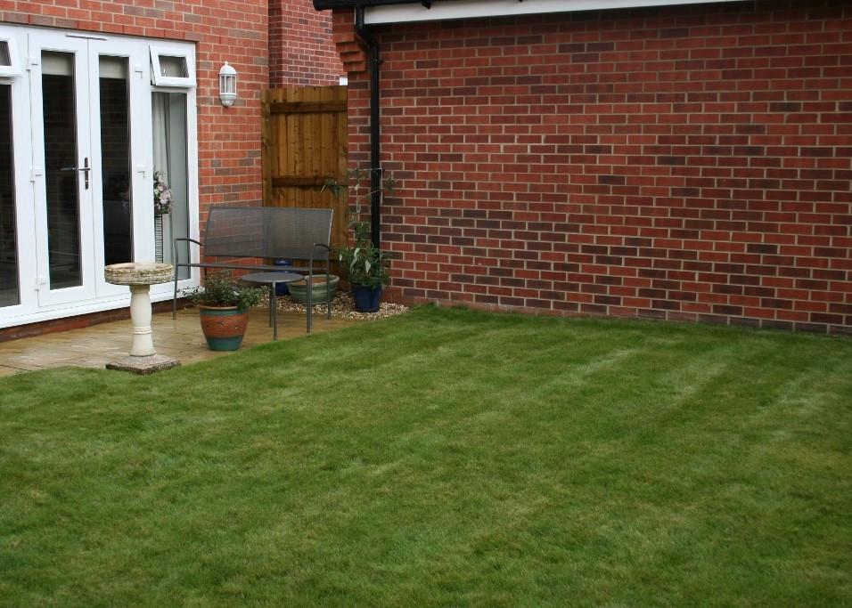 Garden Before 2