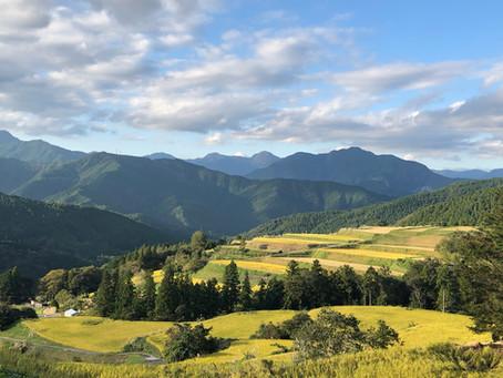 高知県の公募型プロポーザル| 二次審査ヒアリング