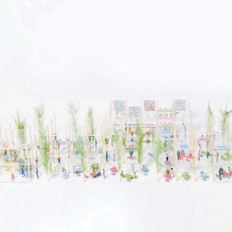 【甲府の本社屋オフィス計画】昨年までの木柱林立案と働き方やワークプレイスを見直した新案