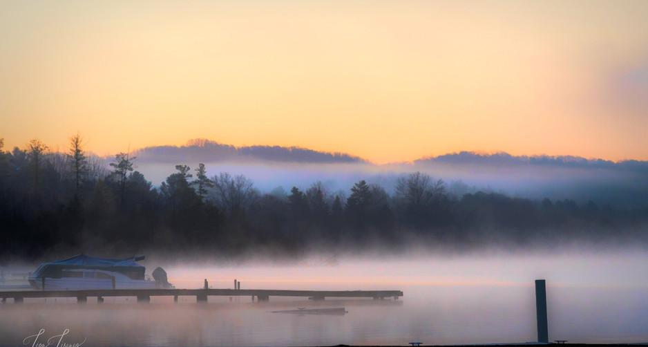 foggy morning.jpg