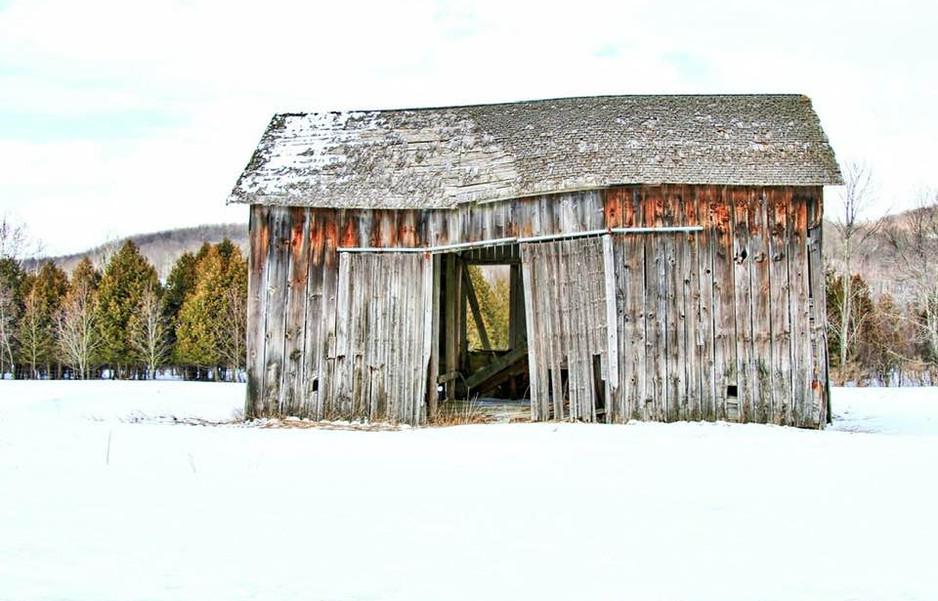 broken but standing barn.jpg
