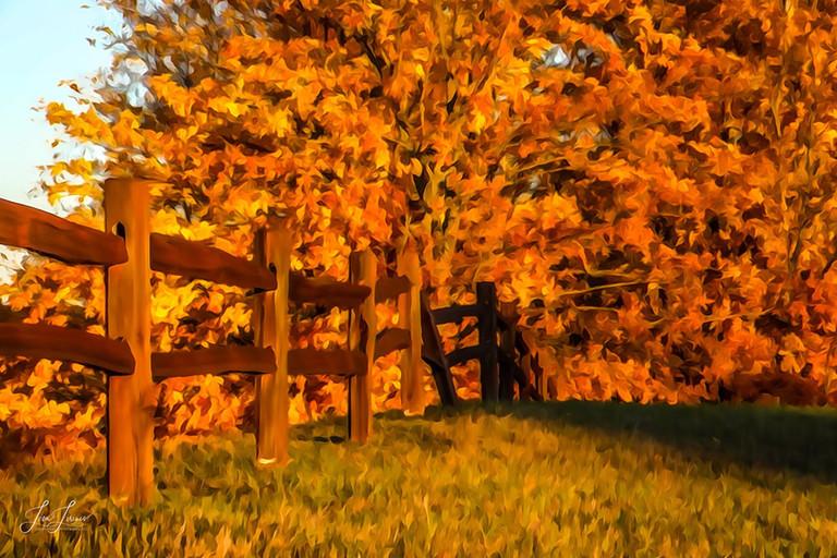autumn fence view 2 - Copy.jpg