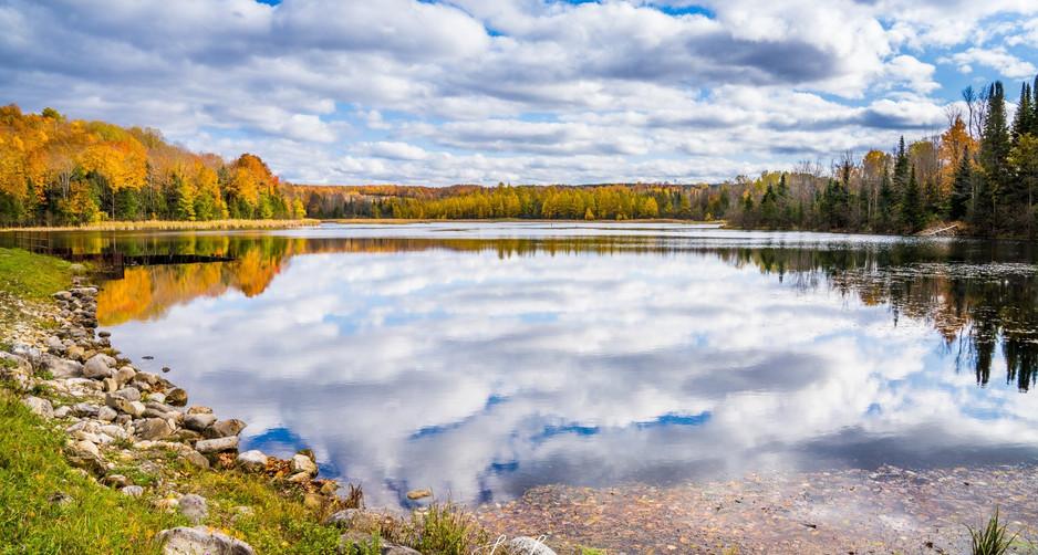 Rug pond reflections - Copy.jpg