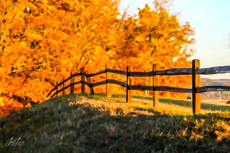autumn fence painting - Copy.jpg