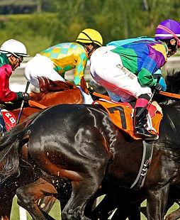 racetrack-4052272_1280.jpg