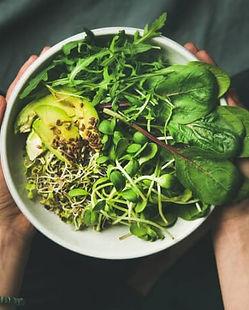 vegan-meals.jpg