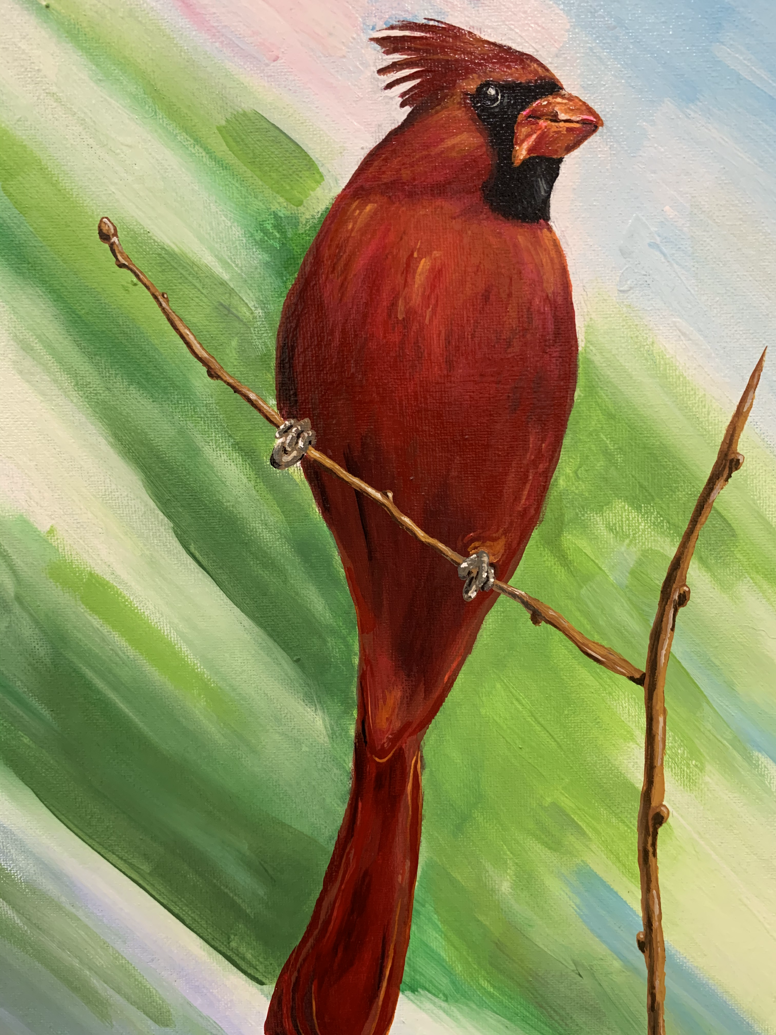 Melissa's Cardinal