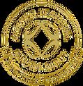 logo $ ariix.png