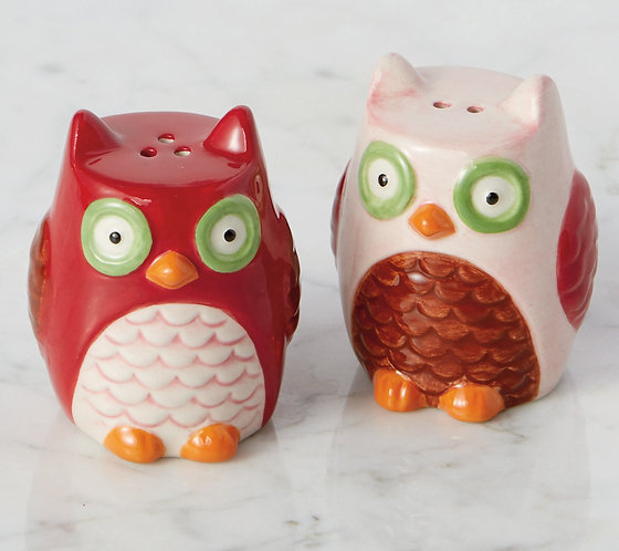 Owls Ceramic Salt & Pepper Shakers