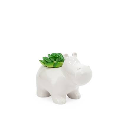 Animal Garden Ceramic Hippo Potted Faux Succulent
