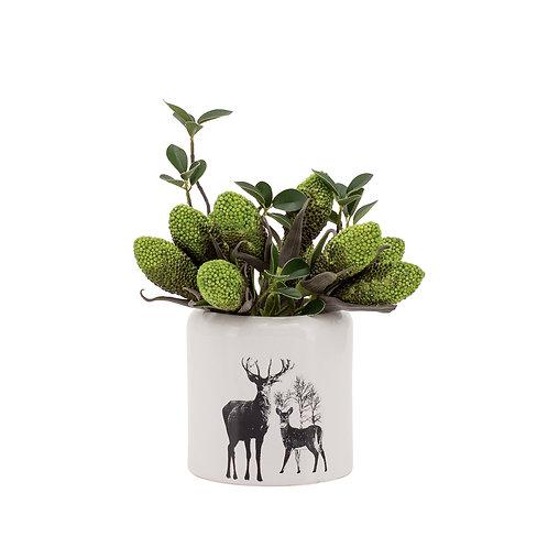 "Stag Ceramic Decal 4"" Drop Pot"