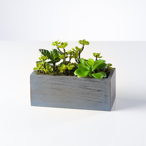 Solaro Rectangle Potted Faux Succulent Cluster