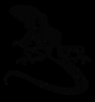 iguana-01.png