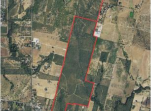 265± acres_Bexar County web.png