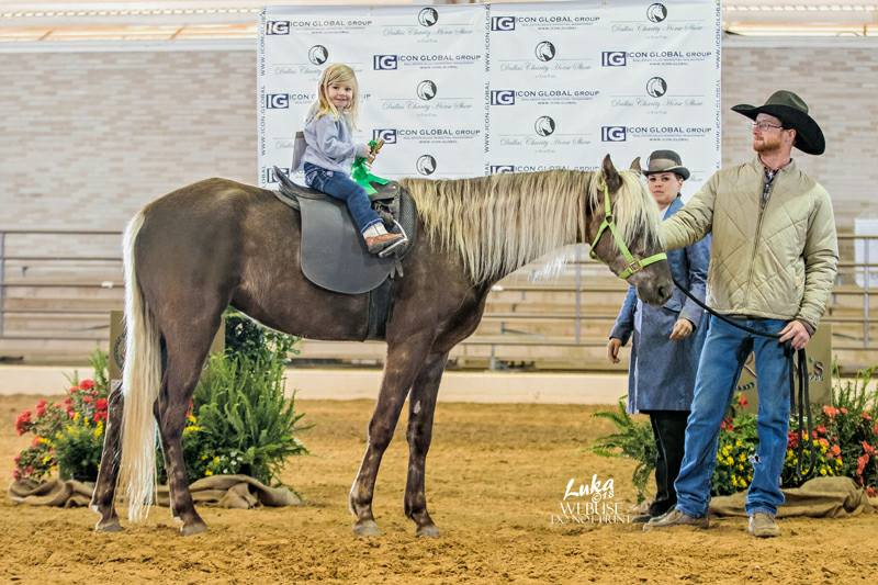 Dallas Charity Horse Show 2018