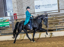 Dallas Charity Horse Show 2018