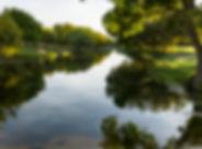 Lonesome Oak-aerial-landscape-web-33.jpg