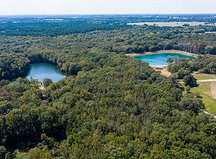 Athens, TX land for sale