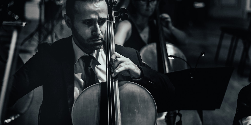 Palace String Orchestra - 20:30