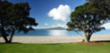 auckland-north-shore.jpg