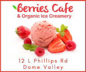 Berries Cafe (1).png