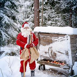 Jõulutaat Valdemar