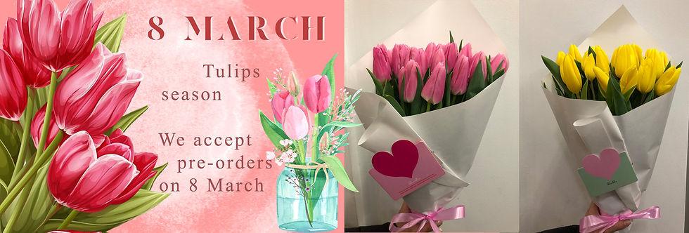 8 march eng.jpg