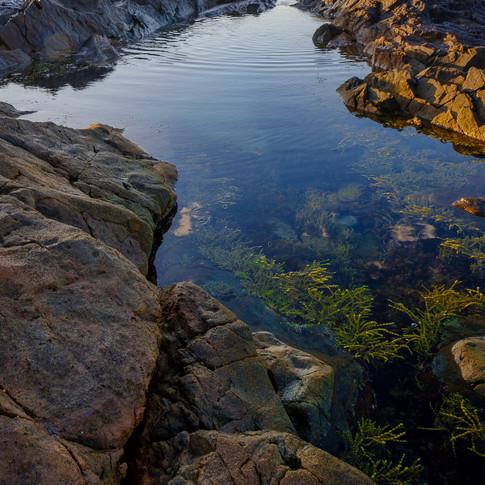Coffs Rocks Sunrise.jpg