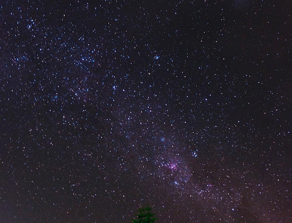 Stars of Tuross