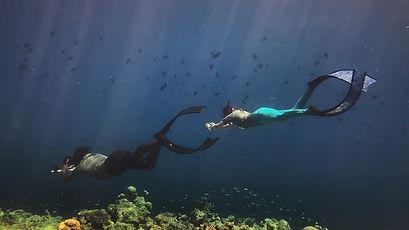 The Reef (5).jpg