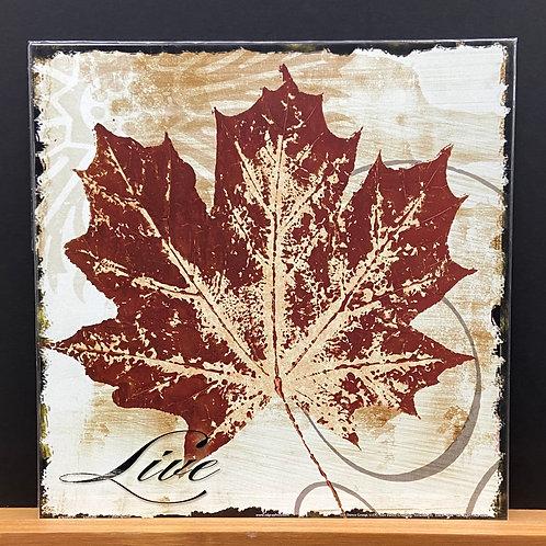 Live Leaf