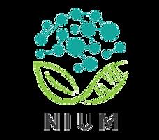 logo01-NIUM-noSlogan-01-GIF.png