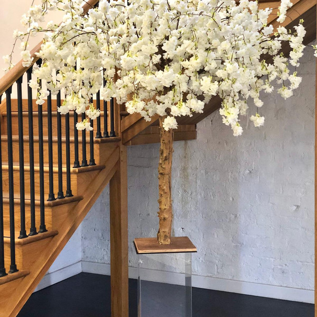 Blossom tree wedding