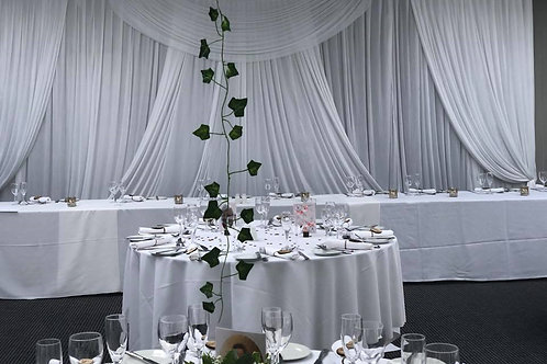 Elegance Backdrop 6x3m