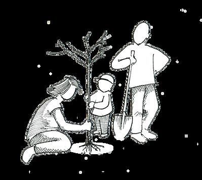 AQR planter un arbre.png
